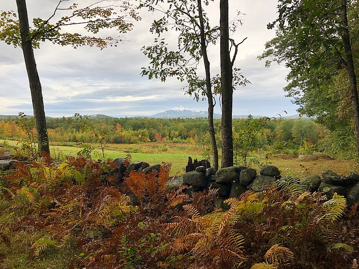 Stone wall, field, woods, and Mount Monadnock
