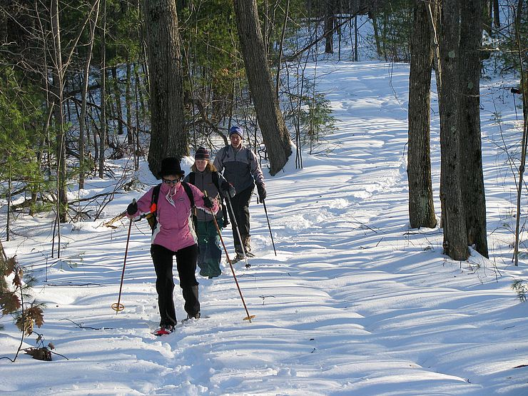 Three snowshoers along snowy trail in woods