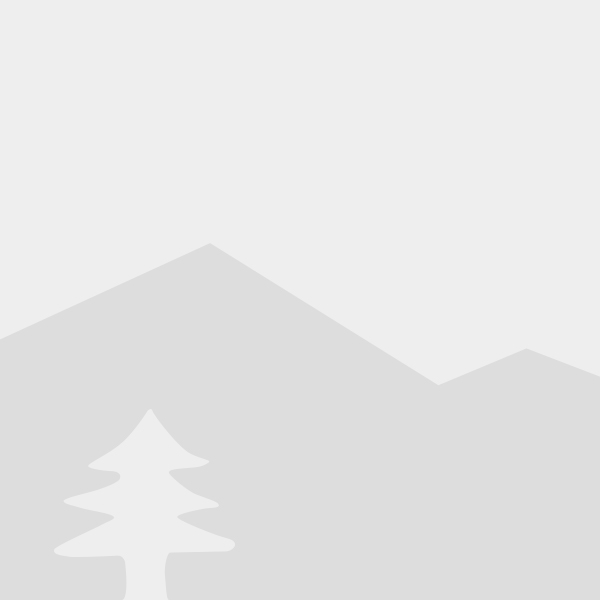 Stylized illustration of mountain and tree